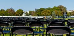 2020.10.04 National COVID-19 Remembrance, Washington, DC USA 278 19022