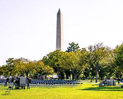 2020.10.04 National COVID-19 Remembrance, Washington, DC USA 278 19026