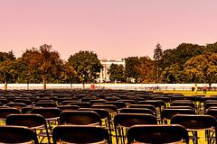 2020.10.04 National COVID-19 Remembrance, Washington, DC USA 278 19021