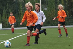 "HBC Voetbal • <a style=""font-size:0.8em;"" href=""http://www.flickr.com/photos/151401055@N04/50421784201/"" target=""_blank"">View on Flickr</a>"