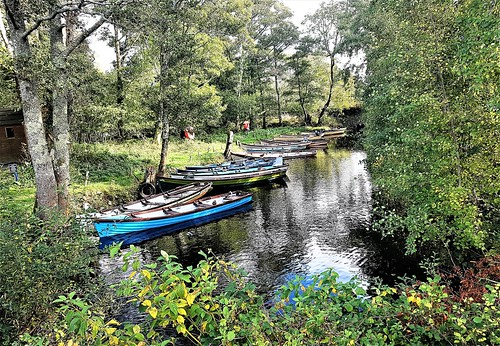 Ireland, Killarney, Ross Castle - Canoes on a tributary of Lough Leane
