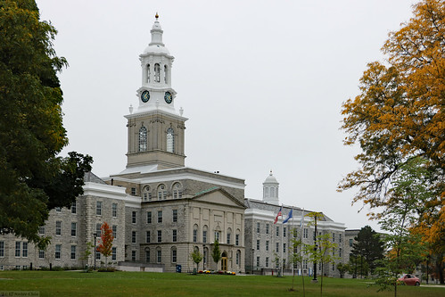 Between trees (University at Buffalo)
