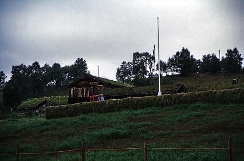"Norwegen 1998 (728) Røros • <a style=""font-size:0.8em;"" href=""http://www.flickr.com/photos/69570948@N04/50430413887/"" target=""_blank"">View on Flickr</a>"