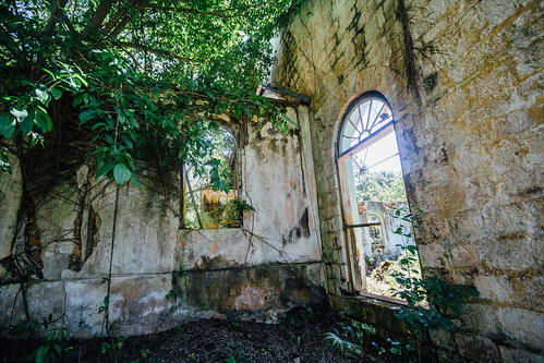 Jungle & Windows in Duppy Church, Mile Gully Jamaica