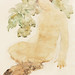 Naked woman showing her breasts, vintage nude illustration. Faunesse (1905) by Auguste Rodin. Original from The Cleveland Museum of Art. Digitally enhanced by rawpixel.