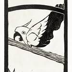 Daddy, Screaming Cockatoo (Pappie, Schreeuwende kaketoe) (c.1900–1922) print in high resolution by Samuel Jessurun de Mesquita. Original from The Rijksmuseum. Digitally enhanced by rawpixel. thumbnail