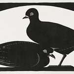 Two pigeons (Twee duiven) (1931) print in high resolution by Samuel Jessurun de Mesquita. Original from The Rijksmuseum. Digitally enhanced by rawpixel. thumbnail