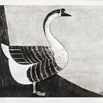 Goose (Knobbelgans) (1916) print in high resolution by Samuel Jessurun de Mesquita. Original from The Rijksmuseum. Digitally enhanced by rawpixel. thumbnail