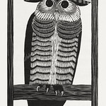 Horned owl (Hoornuil) (1915) print in high resolution by Samuel Jessurun de Mesquita. Original from The Rijksmuseum. Digitally enhanced by rawpixel. thumbnail