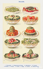 Salad: Cucumber, Beetroot and tomato, Macédoine, Tomato, Russian, Italian, Prawn, Egg, Lobster, and Salad Dumas from Mrs. Beeton's Book of Household Management. Digitally enhanced from our own 1923 edition.