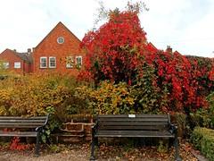 Photo of Lichfield District, England