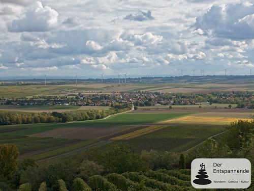 Selzen - Herbstspaziergang bei Zornheim in den Weinbergen über dem Selztal