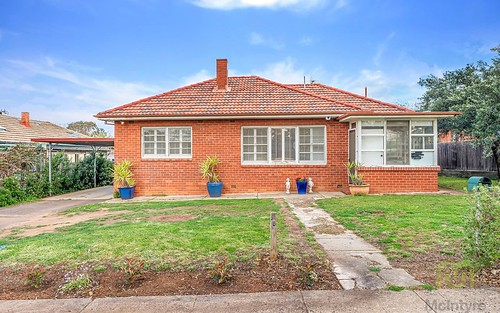 19 Wills Street, Griffith ACT 2603