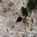 Paxos rocks cave