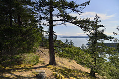 Views from Mount Norman on South Pender Island in British Columbia, Canada (1)