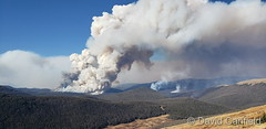 October 7, 2020 - The Cameron Peak Fire as seen from Rocky Mountain National Park. (David Canfield)