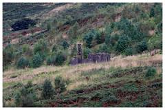 Photo of The Shepherd's Cottage.