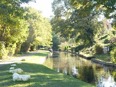 Photo of Chirk Bank, Llangollen Canal. Canal scene in autumn light.