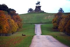 Photo of Windsor Great Park 15 October 2020 018