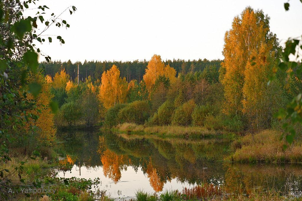 фото: Отражения в озере осенью