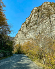 Lake-Ritsa-Abkhazia-iphone-1341