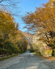 Lake-Ritsa-Abkhazia-iphone-1344