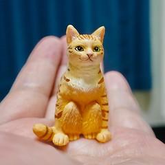 #ガチャガチャ #カプセルトイ #ガシャポン #Gachagacha #ガチャ #plastic #capsuletoy #cat #猫 #ネコ #ねこ #Katze #chat #gatto #gato #feles #кошка #KAT #gato #??? #ko?ka #kass #pisic? #新橋駅 #Shimbashi #港区 #Minatoku #Tokyo #日本 #東京 #Japan