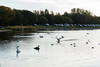 LochOre-20101713