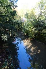 Aire river @ Passerelle des Vignes @ Parc Bernasconi @ Lancy