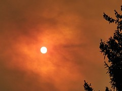 October 16, 2020 - Smoky skies from the Cameron Peak Fire. (LE Worley)