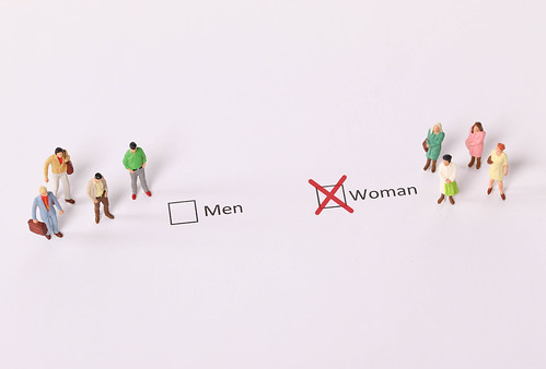 Miniature people standing in front of a check box selected as a Woman