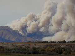 October 17, 2020 - The Cal-Wood Fire explodes in the foothills.  (Ana Mendoza)