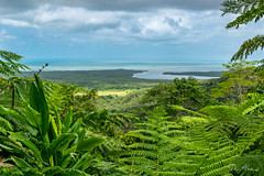 View to Daintree River mouth