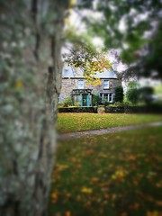 Photo of Quaint cottage in Dornoch