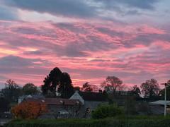 Photo of Newbiggin Pretty in Pink