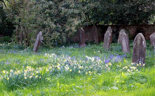 Spring Graveyard