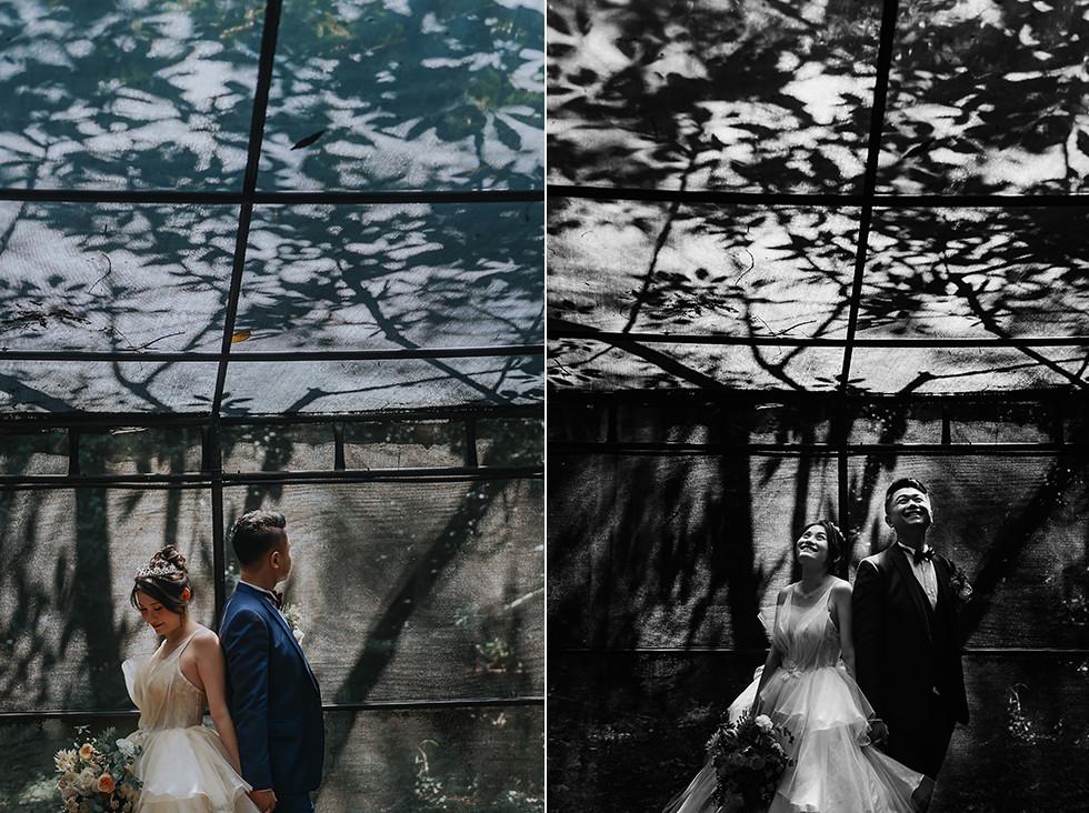 50512638087_58c83a0ed8_b- 婚攝, 婚禮攝影, 婚紗包套, 婚禮紀錄, 親子寫真, 美式婚紗攝影, 自助婚紗, 小資婚紗, 婚攝推薦, 家庭寫真, 孕婦寫真, 顏氏牧場婚攝, 林酒店婚攝, 萊特薇庭婚攝, 婚攝推薦, 婚紗婚攝, 婚紗攝影, 婚禮攝影推薦, 自助婚紗