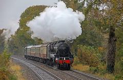 Photo of 45231 - Albrighton