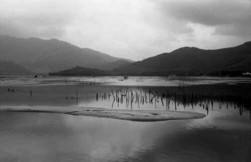 """Foma Lang Co  (Fomapan 100) • <a style=""""font-size:0.8em;"""" href=""""http://www.flickr.com/photos/65969414@N08/50514465632/"""" target=""""_blank"""">View on Flickr</a>"""