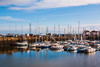 Boats in Tayport Harbour