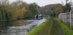 Photo of Bridgewater Canal, Grappenhall, 18th October 2020 (115352)
