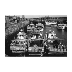 Photo of Pittenweem Harbour