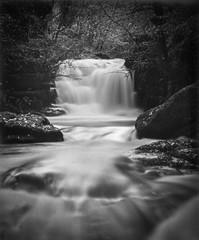 Photo of X-Ray_Exmoor-IMG_1135
