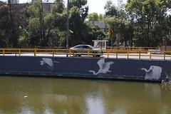 MX MM CANAL NACIONAL
