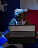 Color Balance Card Bear