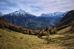 Niedergadenalm