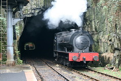 Photo of 3698 Haverthwaite(5)