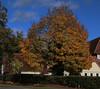 Mrs Howard Memorial Hall, Letchworth 25-10-20