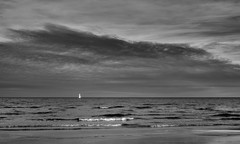 The Lonely Sail