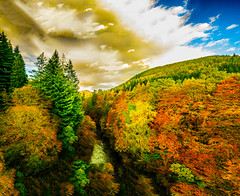 Photo of Autumnal Overture In Perthshire Scotland